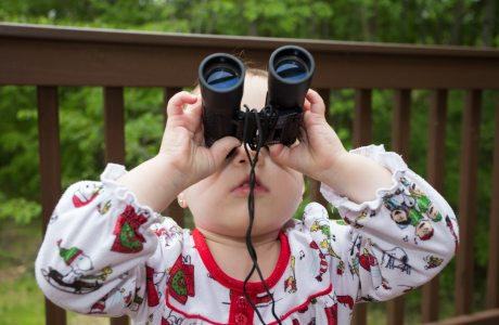 photo of young girl scanning the tree canopy for birds.