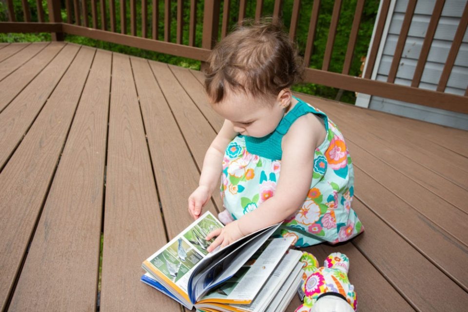 Author's daughter identifying a bird with a book.