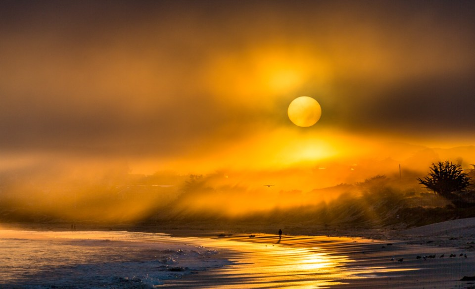 Sunrise through fog on beach with runner and birds in distance, image by Curt Tipton