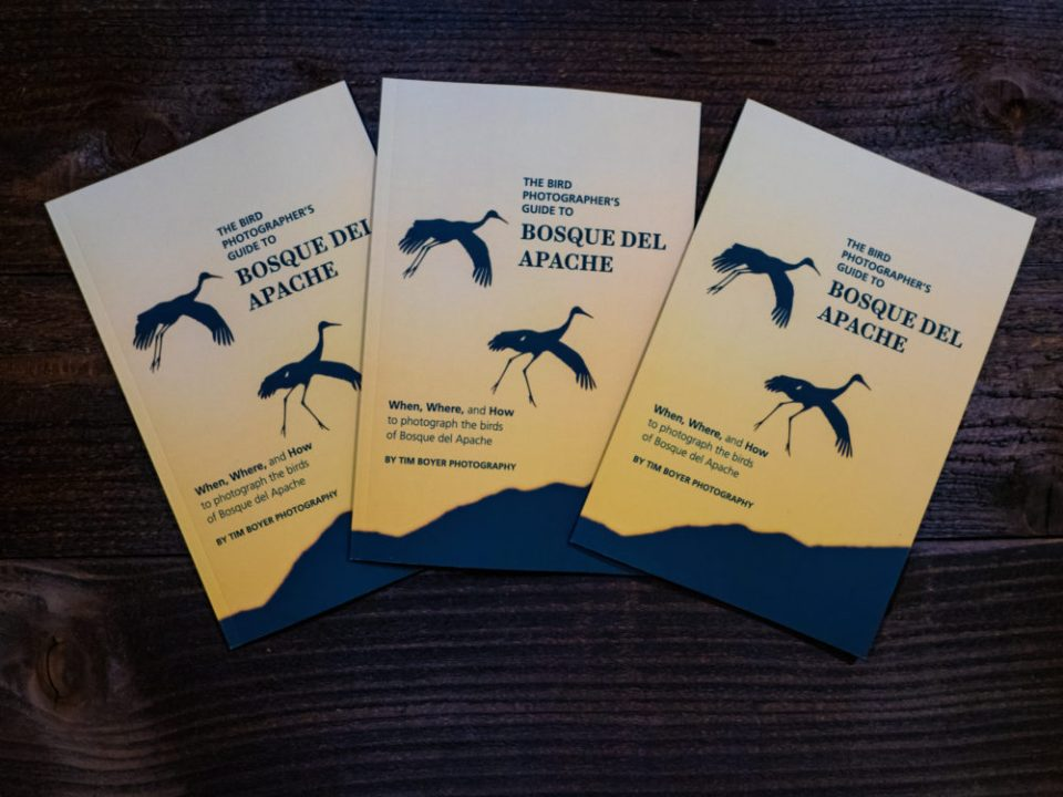 Copies of Boyer's latest book, The Bird Photographer's Guide to Bosque Del Apache. © Tim Boyer