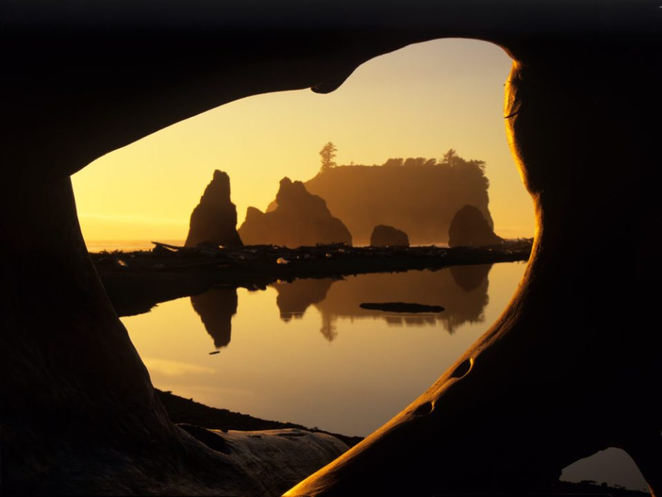 Unique sea stacks seen through a driftwood window on Ruby Beach, Olympic National Park, Washington. © Jerry Ginsberg