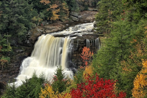 This image of Blackwater Falls State Park in Tucker County, West Virginia, was taken in autumn.