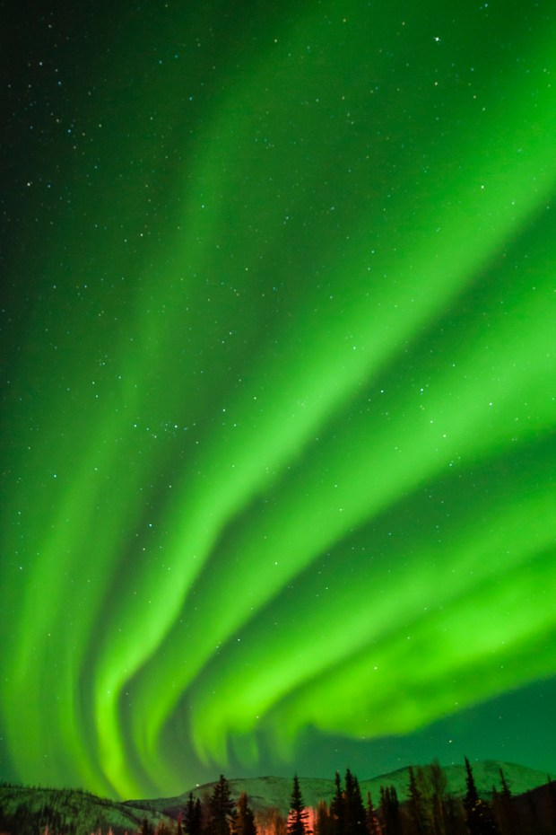 North America, USA, Alaska, outside Fairbanks. Aurora borealis or northern lights. © Cathy & Gordon Illg