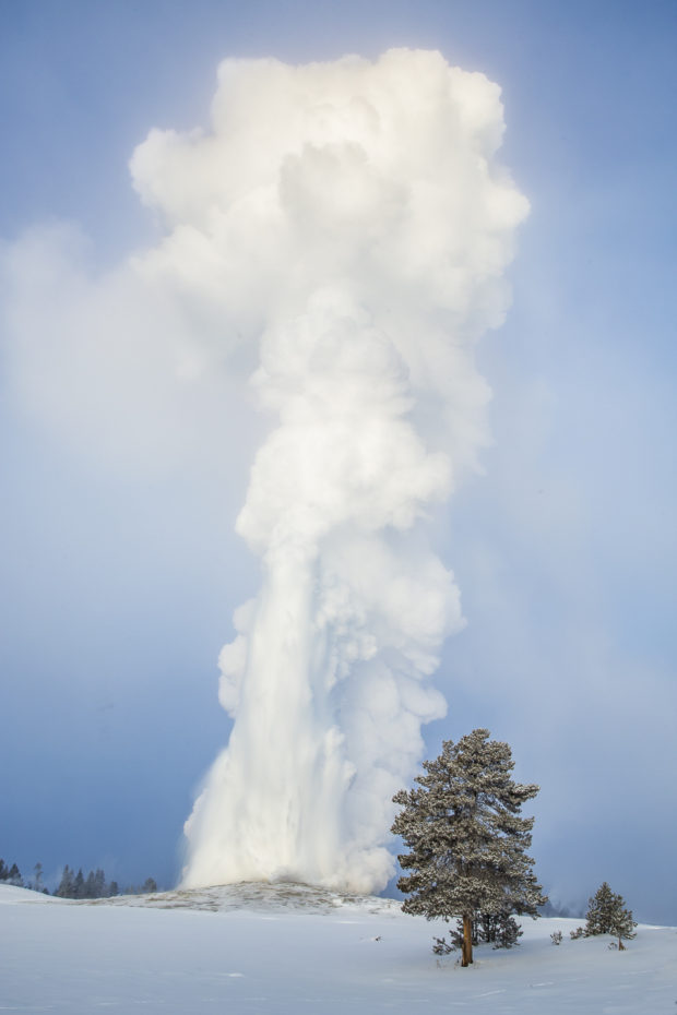 Old Faithful erupting at -33 degrees © D. Robert Franz