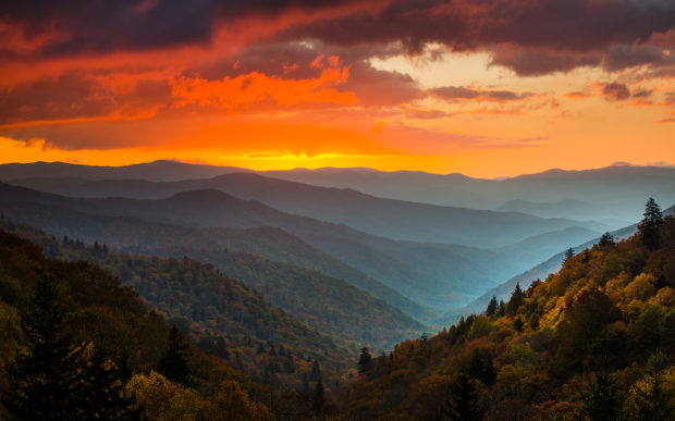 Oncoaluftee Watershed in the Great Smoky Mountains National Park. All landscape photos seen in this article were taken with a Nikon D800 and this assortment of lenses: 14-24mm, 24-70mm and 70-200mm. All were on a tripod. © Tom Haxby