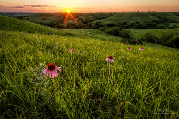 Out in the Flint Hills by Scott Bean