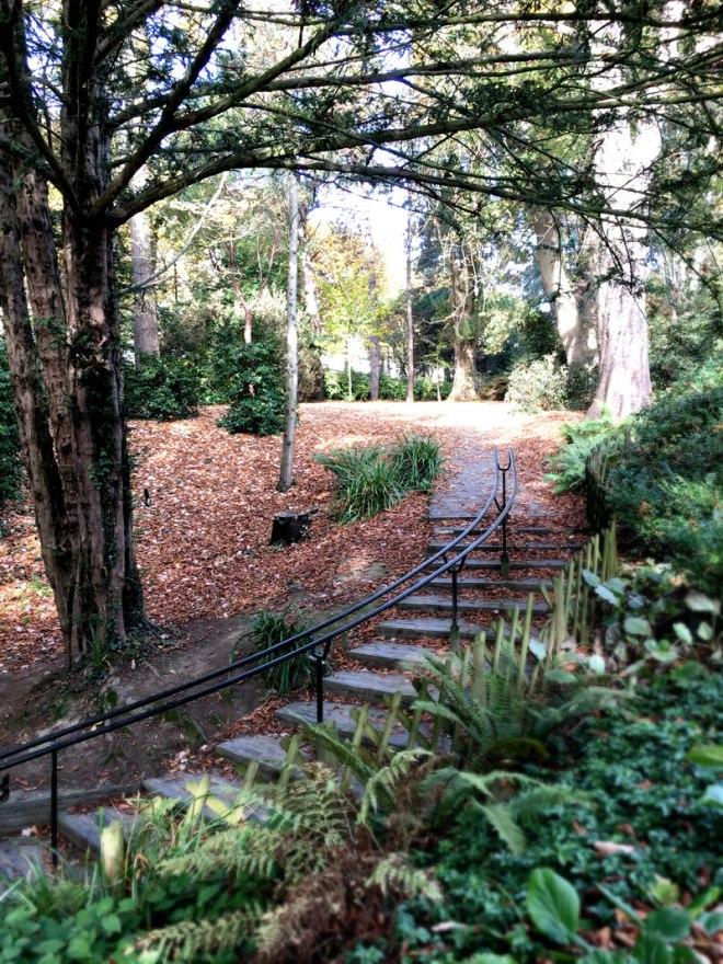 Promenade au Parc de Procé à Nantes