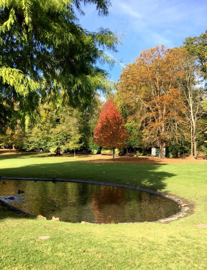 Parc de Procé à Nantes en automne