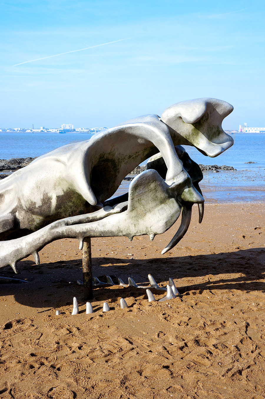 Serpent d'océan de l'artiste Huang Yong Ping