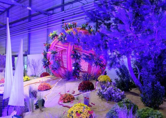 Plantes aux Floralies de Nantes