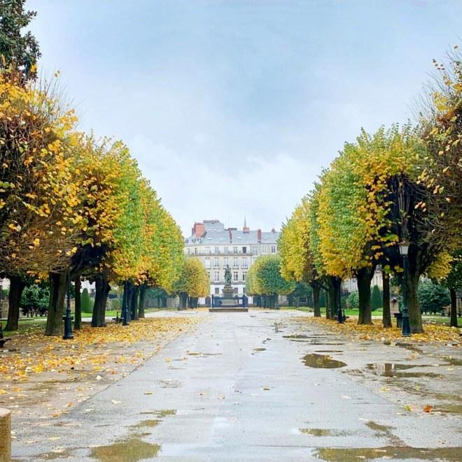 Nantes : le cours Cambronne aux couleurs d'automne