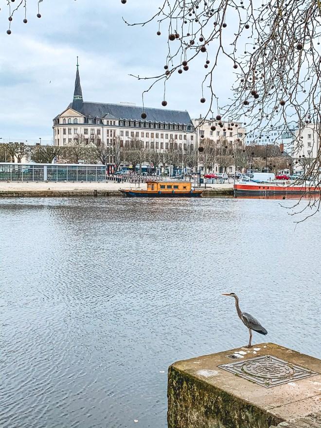 Le canal St Félix de Nantes en hiver