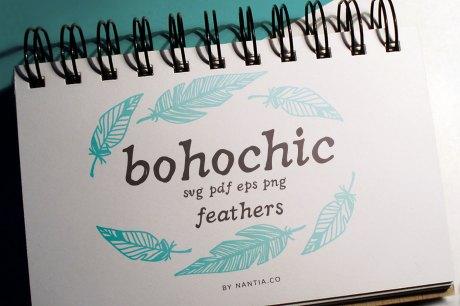 100 Boho-Chic Feathers Vectors