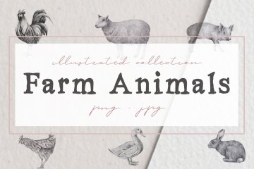 Farm Animals Illustration Pack