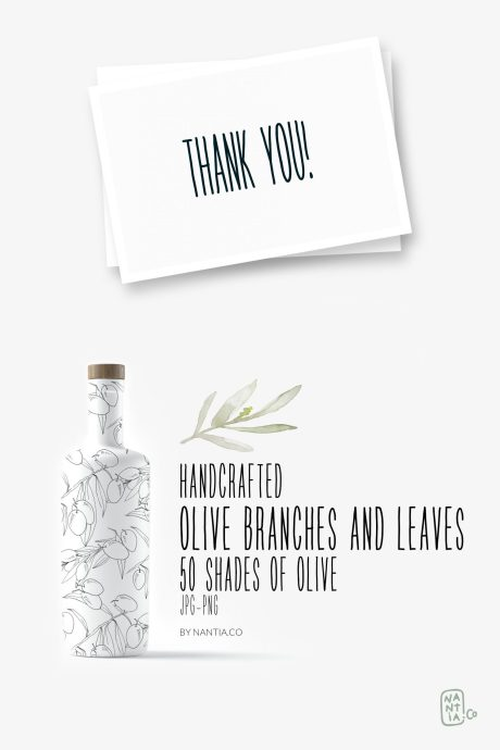 Olive branches and leaves illustrations MegaPack