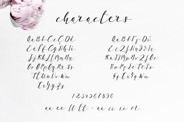 Lil'Baby Script Font
