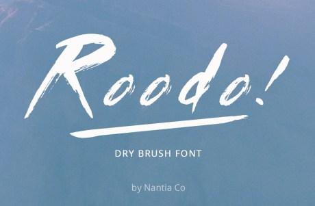 Roodo Dry Brush Font