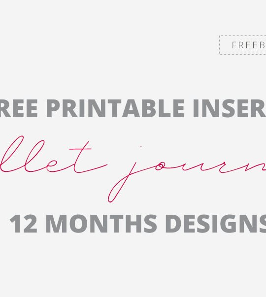 Free Bullet Journal 12 Months Designs A5 Printable Inserts
