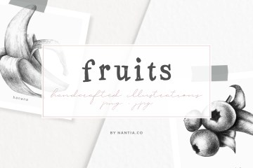 Handdrawn Fruit Illustrations