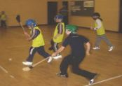 indoor-hurling-pic