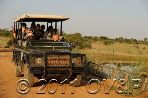 Safari vehicle with photographers at sunrise