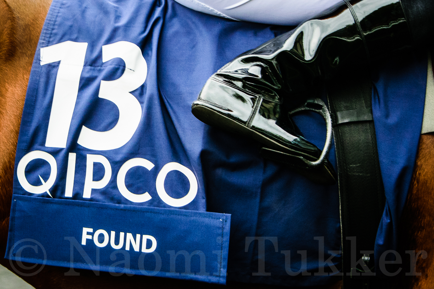 A day of Champions: the events at Ascot
