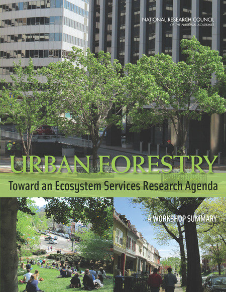 Ddot's urban forestry division (ufd) is the primary steward of washington dc's ~170,000 public trees and has a mission of keeping this resource healthy, safe, & 3 Next Steps For The Future Urban Forestry Toward An Ecosystem Services Research Agenda A Workshop Summary The National Academies Press