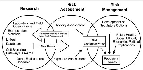 3 Current Practices for Assessing Risk for Developmental