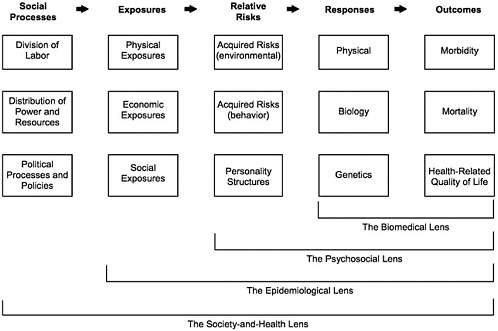 Paper Contribution F: Behavioral and Social Science