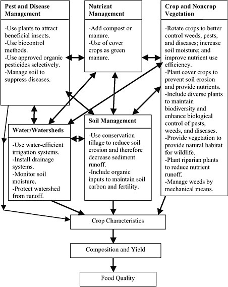 Crop-ecology-productivity-and-management-in-agricultural
