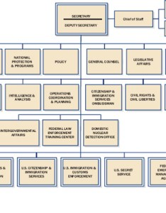 Department of homeland security organization chart image also appendix  rh nap