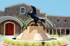 Black Stallion Winery, Napa Valley