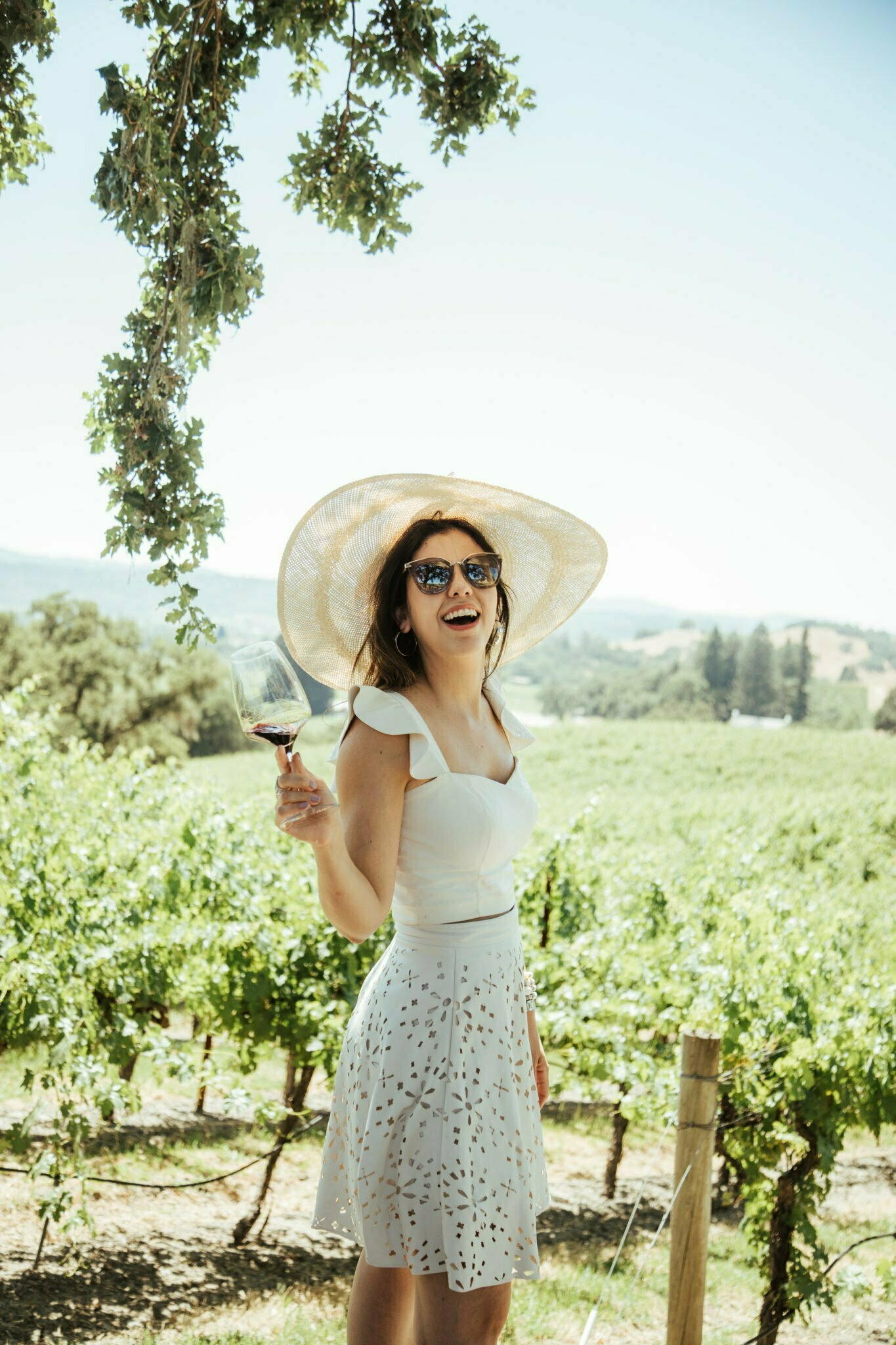 About Napa Valley 2