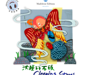 sleeping stones book cover with chinese translation