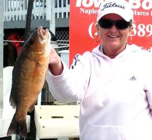Snapper on the Reefs, Naples FL