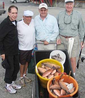 Mangrove Snapper from Fishing Charter, Naples, FL