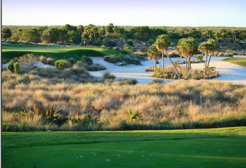 rookery golf