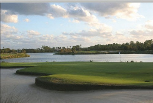 Tiburon Golf
