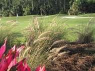 Naples Heritage Golf Club