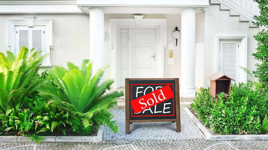 Selling your home - Naples Golf Homes | Naples Golf Guy on house plants outdoors, house plants low light, house plants pets, house plants dogs, house plants that clean the air, house plants blog, house plants with long green leaves, house plants design, house plants flowers, house plants care, house plants food, house plants guide, house plants house, house plants books, house plants gifts,