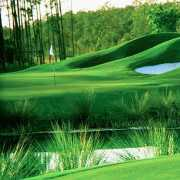 Estero Golf Properties