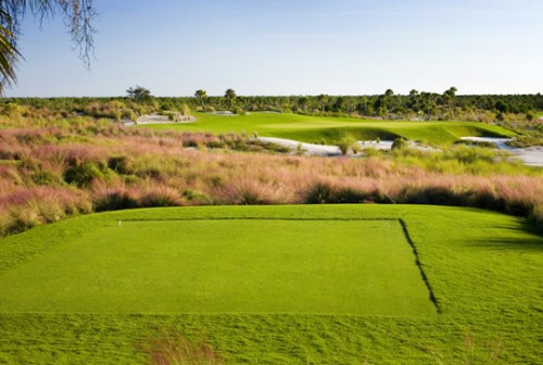 Hammock Bay GC Naples