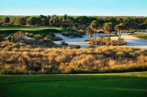 Hammock Bay Golf