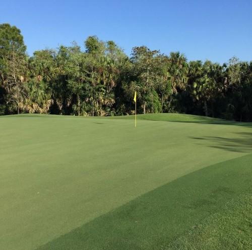 Old Florida membership