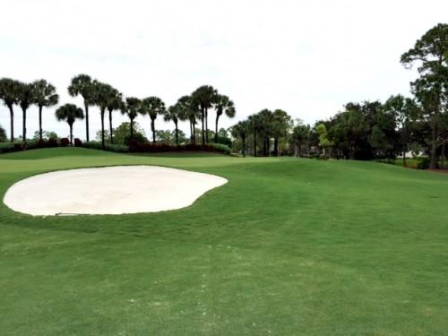 Vanderbilt Golf Club Naples