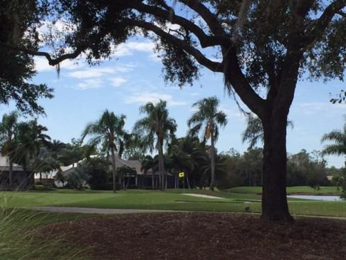 Wildcat Run Golf Club