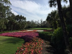Quail West Golf Property Trends