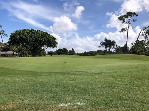 RP Golf Club Naples