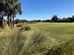 luxury golf homes for sale in Estero
