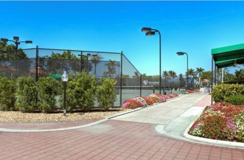 Gulf Harbour Tennis